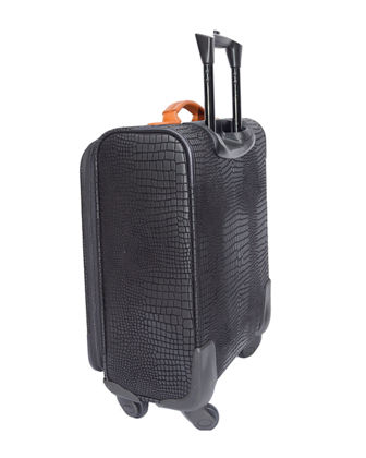 "My Safari 30"" Expandable Spinner  Luggage"