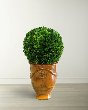 Large Boxwood Ball in Tuscan Urn